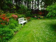 Gartenanlage-mit-Parkcharakter