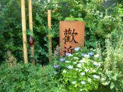 asiatische-Elemente-mit-passender-Bepflanzung-2